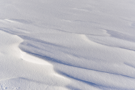 Small snowdrifts create an opportunity to study line.