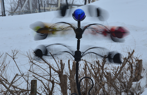 I captured movement with my camera at its finest... March 20th - the first day of Spring and no sign of warmth or melting