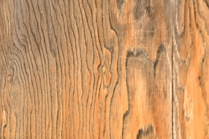 The surface of a weathered wooden door beckons to be touched to trace the undulating vertical lines.