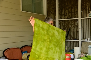 Colleen set out exploring her favorite color. She had an array of greens to show off.