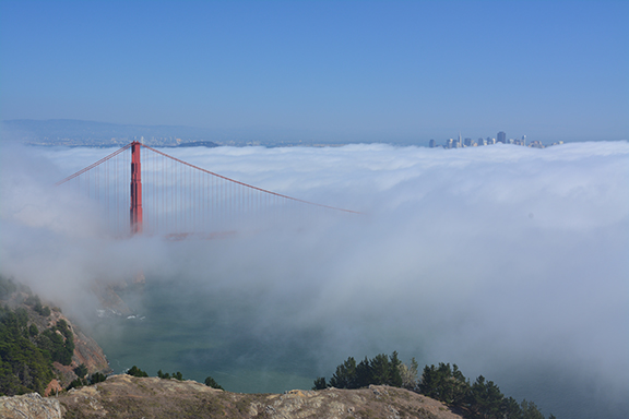 Despite taking some time over lunch in Sausolito, the fog never lifted. Driving up the headlands road provided us with a wonderful view of the distant city and just one arch piercing through the dense, ever changing fog bank.