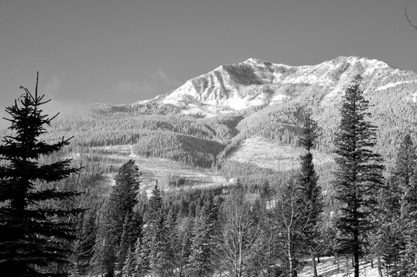 Elkford in the snow