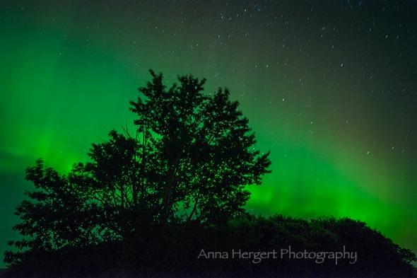 Aurora I