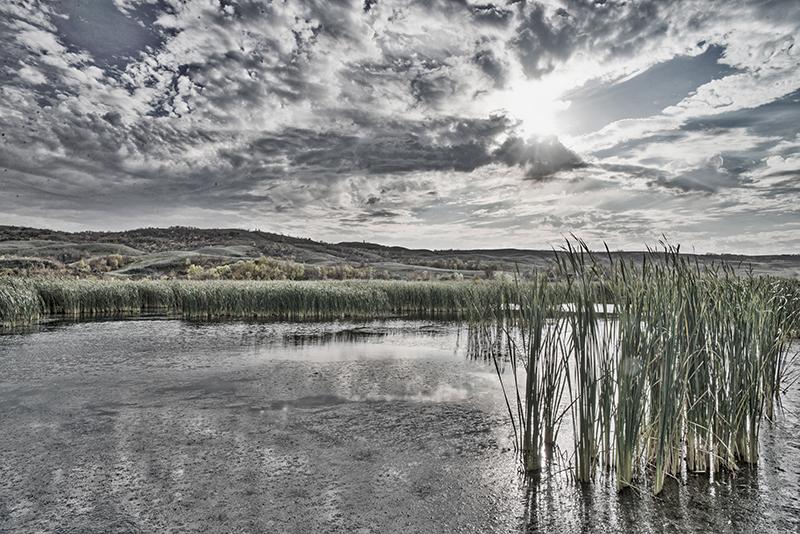 Lake Shore Vista_reduced