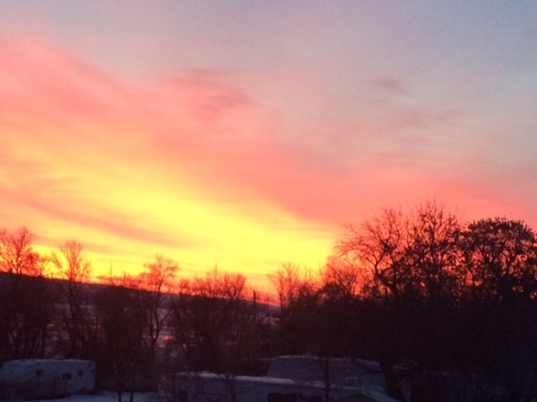 Who can resist a glorious sunrise at 8:30 am - I just had to run out and capture that moment this morning.