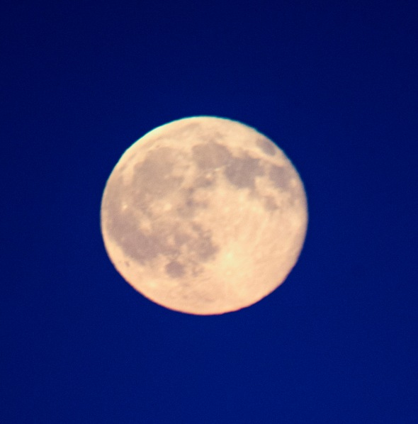 Strawberry Moon full